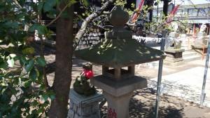久富稲荷神社 南側鳥居の狐 (2)