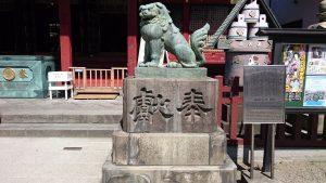 浅草神社 拝殿前狛犬 (2)