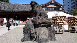 浅草神社 参道狛犬 (2)