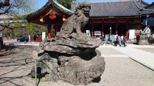 浅草神社 参道狛犬 (1)