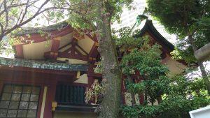 蒲田八幡神社 本殿