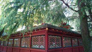 浅草神社 本殿