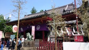 浅草神社 拝殿