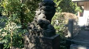 蒲田八幡神社 天祖神社狛犬 吽