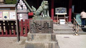 浅草神社 拝殿前狛犬 (1)