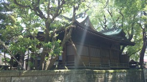 廣尾稲荷神社 社殿全景
