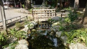 秩父神社 柞の禊川 (1)