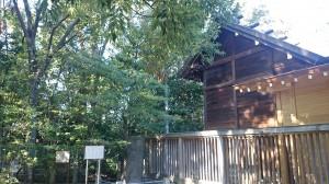 新田神社 御塚 (2)