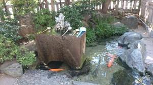 厳嶋神社(抜弁天) 手水と弁天池