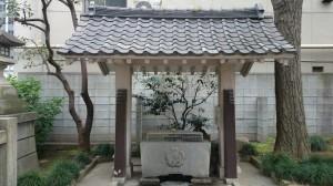 須賀神社 手水舎