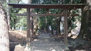 善福寺公園内市杵嶋神社 (7)
