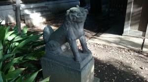 大井鹿嶋神社 境内社狛犬 (1)