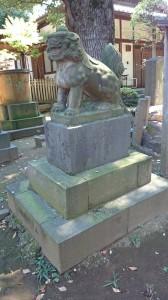 西向天神社 拝殿前狛犬 (2)