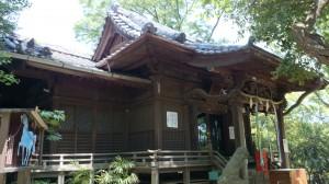 千束八幡神社 社殿 (2)