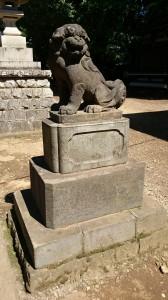 新宿諏訪神社 狛犬 (2)