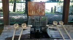 新宿諏訪神社 霊泉