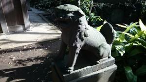 大井鹿嶋神社 境内社狛犬 (2)