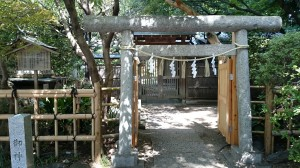 大宮八幡宮 多摩清水社 (1)