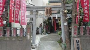 讃岐・小白稲荷神社 讃岐稲荷鳥居