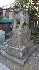 筑土八幡神社 狛犬 (1)