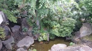 桐ヶ谷氷川神社 氷川の滝 (2)