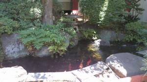 雪ヶ谷八幡神社 庭園