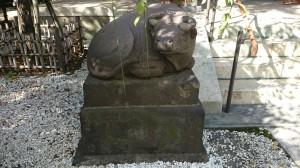 牛天神北野神社 伯牛 (2)