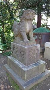 筑土八幡神社 狛犬 (2)