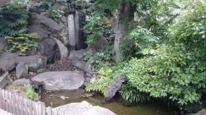 桐ヶ谷氷川神社 氷川の滝 (1)