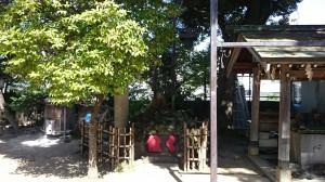 四谷須賀神社 「く組」の梯子塚