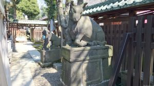 牛嶋神社 垣内狛牛・狛犬 (2)