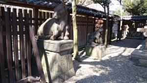 牛嶋神社 垣内狛牛・狛犬 (1)