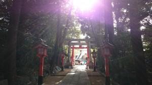 馬橋稲荷神社 参道 (1)