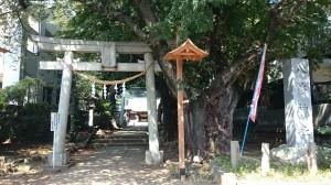 下高井戸浜田山八幡神社 一の鳥居と社号標