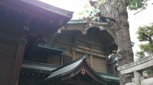 鐵砲洲稲荷神社 本殿 (1)