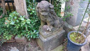 元赤城神社 狛犬