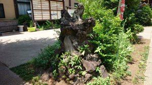 鷺宮八幡神社 狛犬 (小)吽
