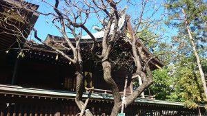 六郷神社 本殿