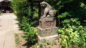 鷺宮八幡神社 狛犬 阿