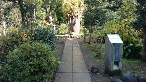 江島神社 亀石・力石