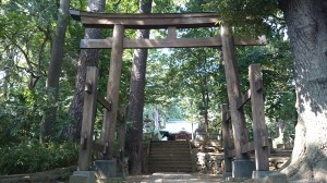 和泉熊野神社 三の鳥居