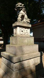 高井戸西第六天神社 大正6年狛犬 (2)