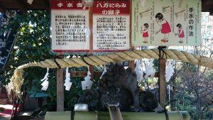 江北氷川神社 八方睨みの獅子