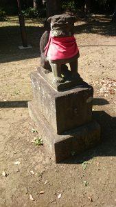 高井戸西第六天神社 明和8年銘石造狛犬 (1)