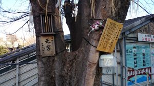太田姫稲荷神社(一口稲荷神社)元宮 (2)