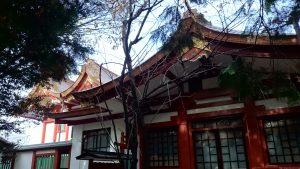 旗岡八幡神社 本殿