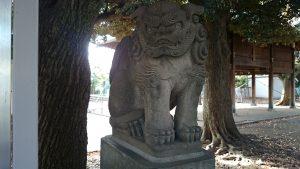 旗岡八幡神社 狛犬 (1)