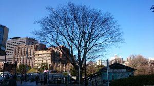 太田姫稲荷神社(一口稲荷神社)元宮 (1)