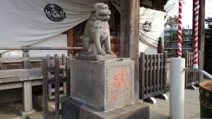 綾瀬稲荷神社 落語狛犬 吽形