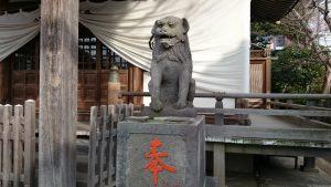 綾瀬稲荷神社 落語狛犬 阿形